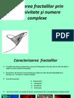 Generarea Fractalilor Prin Recursivitate Si Numere Complexe 2.
