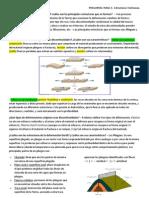 Preguntas TEMA 3.- Estructuras Tectónicas.