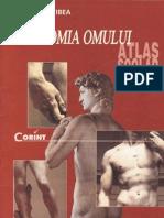 35177359 Anatomia Omului