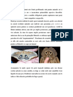 Etologie Comprata_Modul 3-4