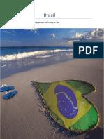 Brazil Werkstuk Ak[1]