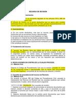 EL RECURSO DE REVISIÓN