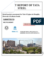 Revised Project Report of Tata Steel33333333333333