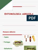 Entomologia Agricola Aula 8