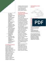 Chemia Materialow Pigula, Sciag