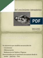Exposición RCIU.