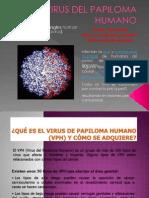 VIRUS DEL PAPILOMA HUMANO.pdf