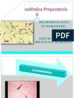 Expo, Leishmania