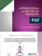 Introduccion a La Gestion de Proyectos Sociales