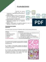 Acumulaciones Patologia