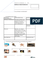 Examen Animales Invertebrados 4°básico
