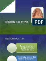 Region Palatina