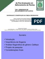 JFRodrigues-201001-Seminario