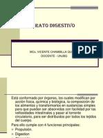 APARATO_DIGESTIVO[1]