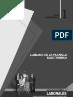 Llenado de La Planilla Electronica - Guia Operativa 1