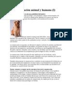 La comunicación animal y humana