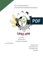 Reporte Practica III