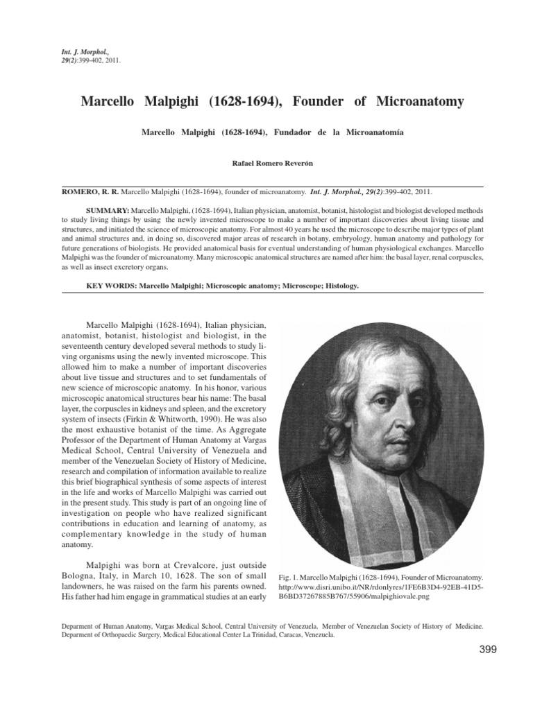 malpighi | Histology | Anatomy
