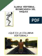 Tema 12. Columna Generalidades