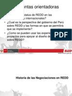 Redd Peru in International Negotiations-Augusto Castro Nunez