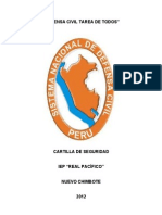 CARTILLA DE DEFENSA CIVIL DE REAL PACÍFICO