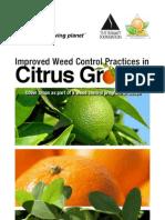 Booklet Cítricos (ENG) web