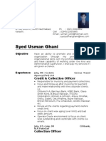 Resume (Usman) 1