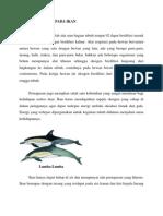 Sistem Respirasi Pada Ikan