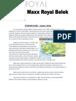 Maxx Royal - Proiect Larisa