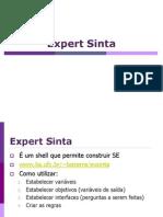 Expert Sinta (1)