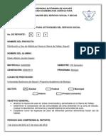 Reporte de Servicio Social 1 Jacobo