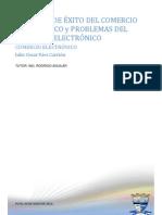 FACTORES DE EXITO Y PROBLEMAS DEL COMERCIO ELECTRÓNICO