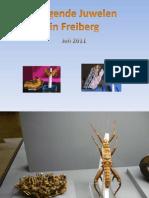 Jumelage Des Pierres Et Des Insectes-(-BabGy-)