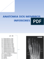 Anatomia Radiologica Membros Inferiores
