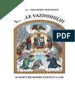 Vamile vazduhului si marturii despre existenta lor - Protos. Nicodim Mandita