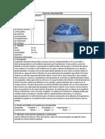 Ficha de Catalogación. Porcelana Virreinal