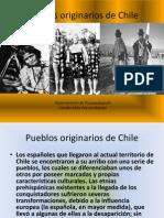 17308815 Pueblos Originarios de Chile