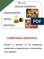 Clase 3 Biomoleculas Organicas 2012 1