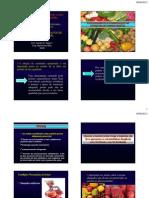 PTA Processamento de Produtos de Origem Vegetal