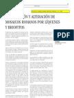 Rowe, J. et al. Colonización y alteración de mosaicos por líquenes y briófitos. PH 1995