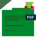 The Ambition Maturity Gap Report June 2012 FINAL FINAL