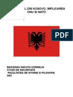Conflictul Din Kosovo, Implicarea ONU Si NATO(Dancuta)