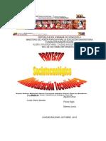 Proyecto de Alfabetizacion Tecnologica.ok[1]