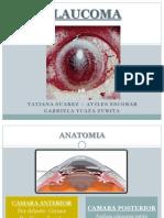 Glaucoma Tatiana Gaby