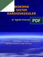 Biokimia Sistim Kardiovaskuler