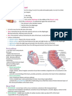 Cardiovascular System- Heart Intro