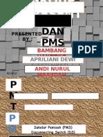 Presentasi PMT & PMS