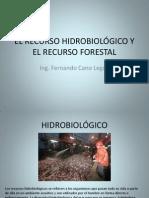 7 EL RECURSO HIDROBIOLÓGICO Y FORESTAL