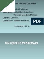 Sintesis de Proteinas 111