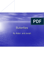 butterflies by jonah and aidan